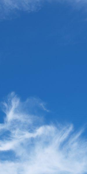 atmosphere-beautiful-blue-695657